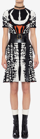 Beetle Jacquard Mini Dress | DESIGNER INSPIRED FASHIONS