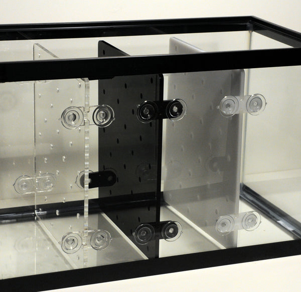 20 gal high adjustable aquarium divider