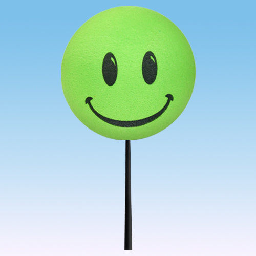 ..HappyBalls Happy Smiley Face Car Antenna Topper / Desktop Bobble Buddy (Green)