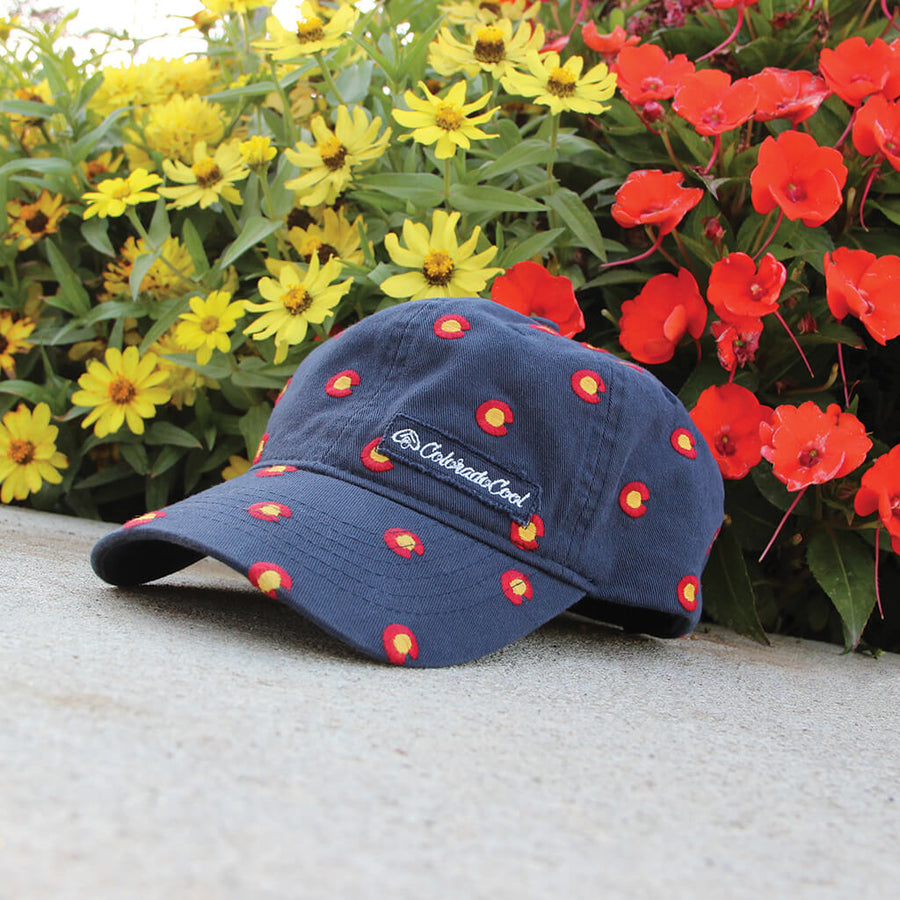 The Grove - Colorado Flag Hat - Washed Curved Bill - Adjustable