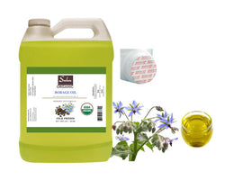 4 lbs Organic Extra Virgin Fresh Borage Seed Oil Cold Pressed Unrefined