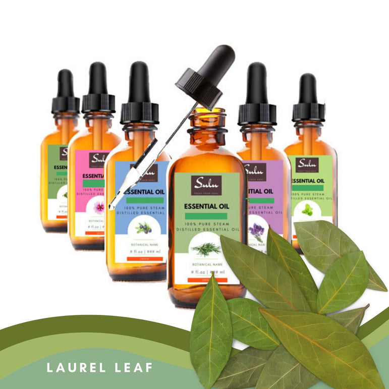 100% Pure and Natural Steam Distilled  Laurel Leaf Essential Oil