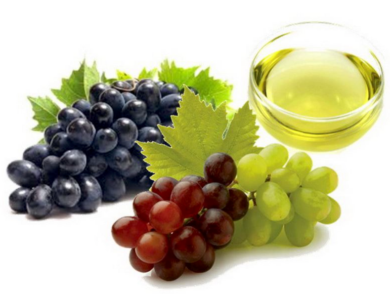 WHOLESALE OF  UNREFINED COLD PRESSED GRAPE SEED OIL