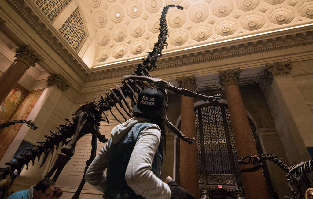 American Museum of Natural History New York City - Things to Do in NYC