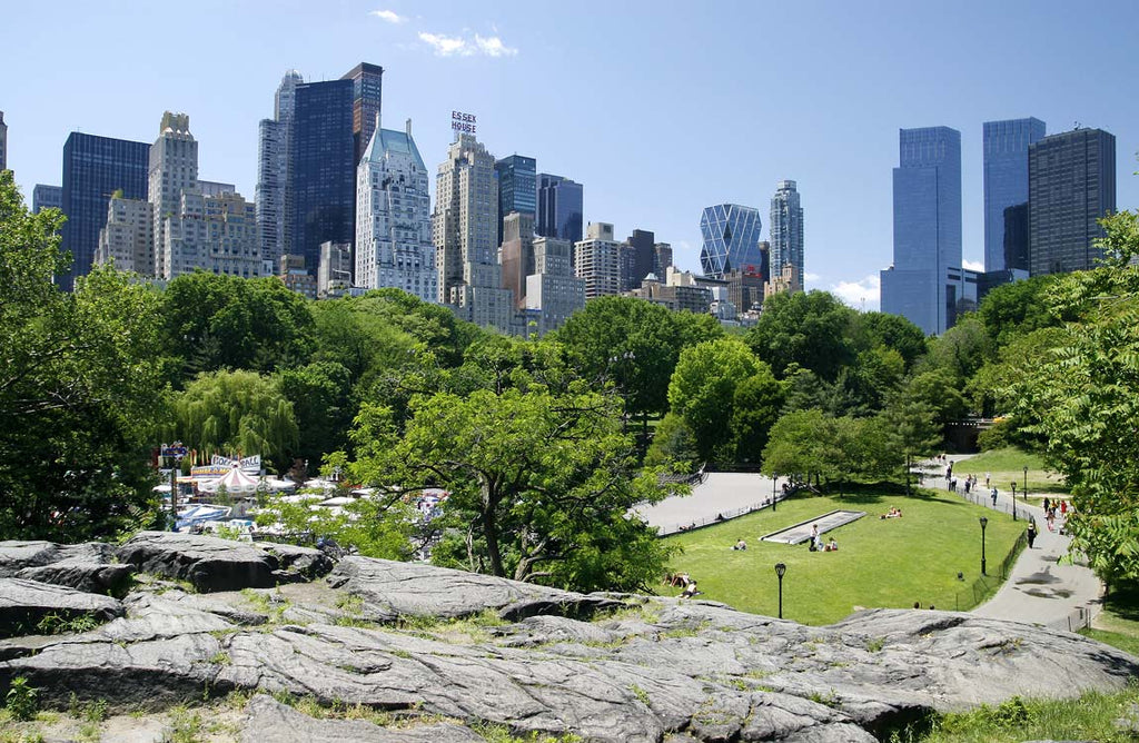 Central Park New York City - Things to Do in NYC