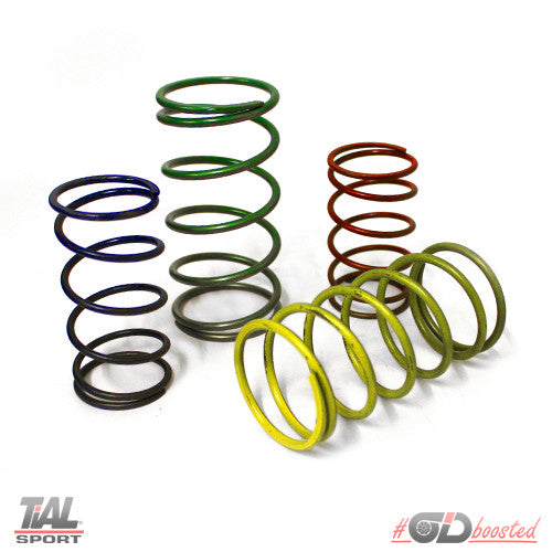 TiAL Sport Wastegate Springs - Owen Developments