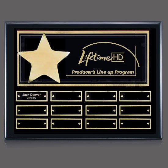 Hollister (Horiz) P/Plaque - Black/Gold 12 Plate