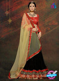 SC 13604 Red and Black Net Embroidered Lahenga Choli