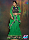 SC 13606 Green and Blue Net Embroidered Lahenga Choli