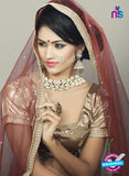 AZ 2378 Beige and Maroon Embroidered Velvet Lehenga Choli - Lehengas - NEW SHOP