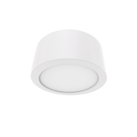 CL11 12W LED Ceiling Light