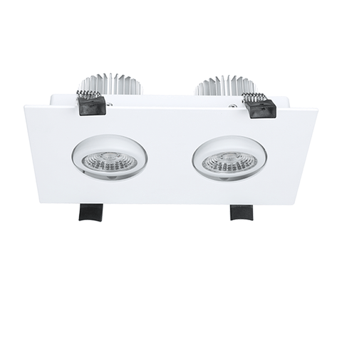 DL31 20W double LED Downlight Spotlight