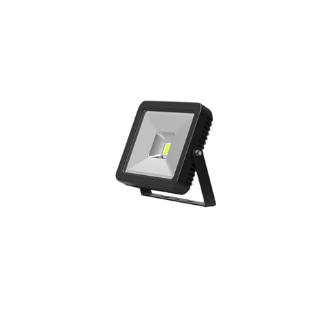 FL10 10W LED flood light