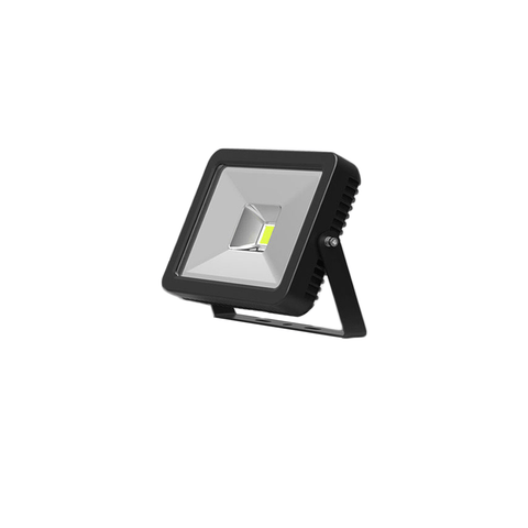 FL10 30W LED flood light