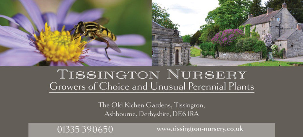 Tissington Nursery Gift Voucher - £25