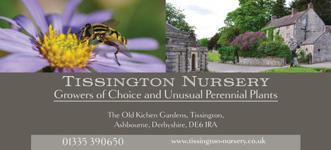 Tissington Nursery Gift Voucher - £10