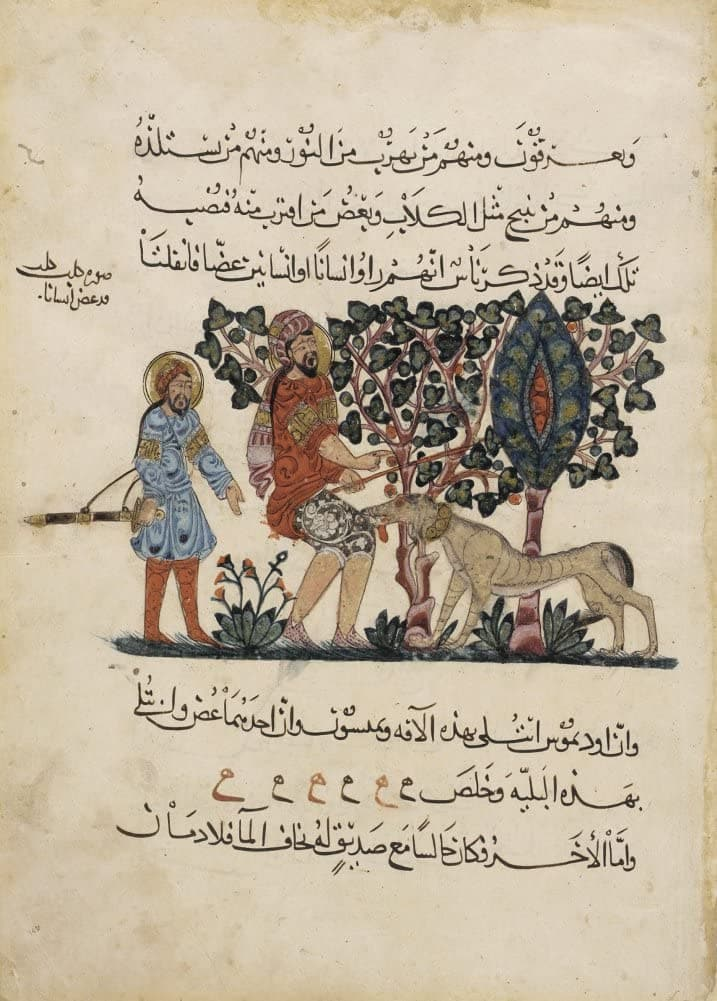 Vintage Anatomy 'Arabic Translation of 'The Dioscorides De Materia Medica', Physician Preparing a Man's Dog Bite', Iraq, 13th Century, Reproduction Vintage 200gsm A3 Classic Anatomy Poster
