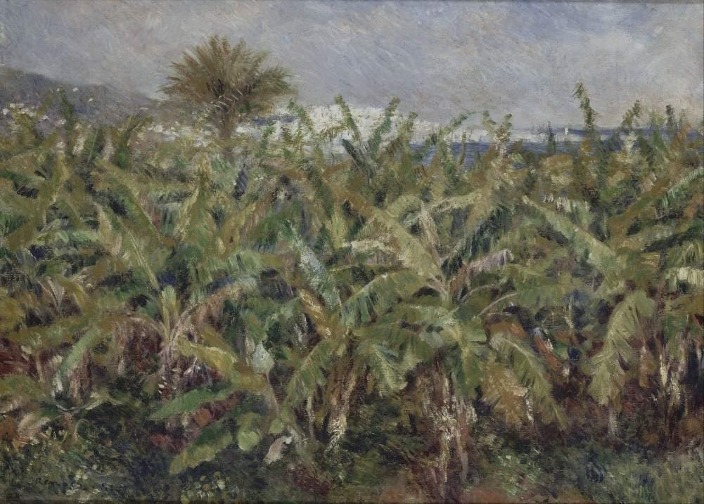 Pierre-Auguste Renoir 'Field of Banana Trees', France, 1881, Reproduction 200gsm A3 Vintage Classic Art Poster