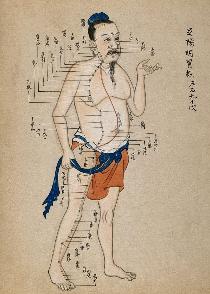 Vintage Anatomy Acupuncture 'Chart', 19th Century, China, Reproduction 200gsm A3 Vintage Poster