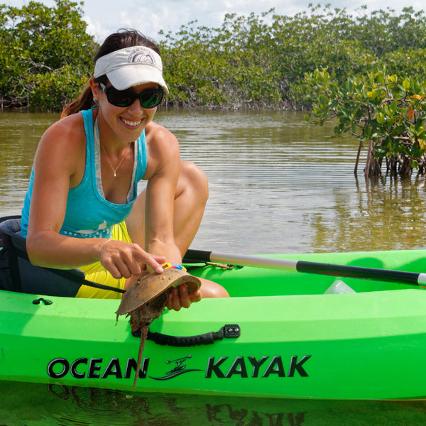 Backcountry Kayak & Paddleboard Tour