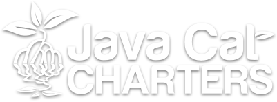 java cat charters logo