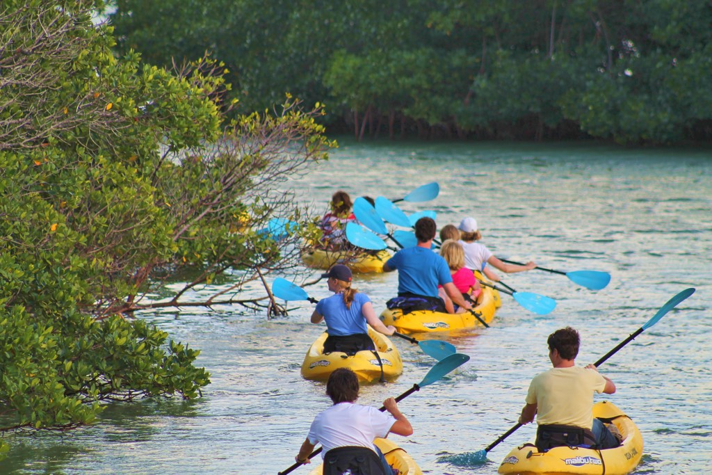 charter paddle tour group