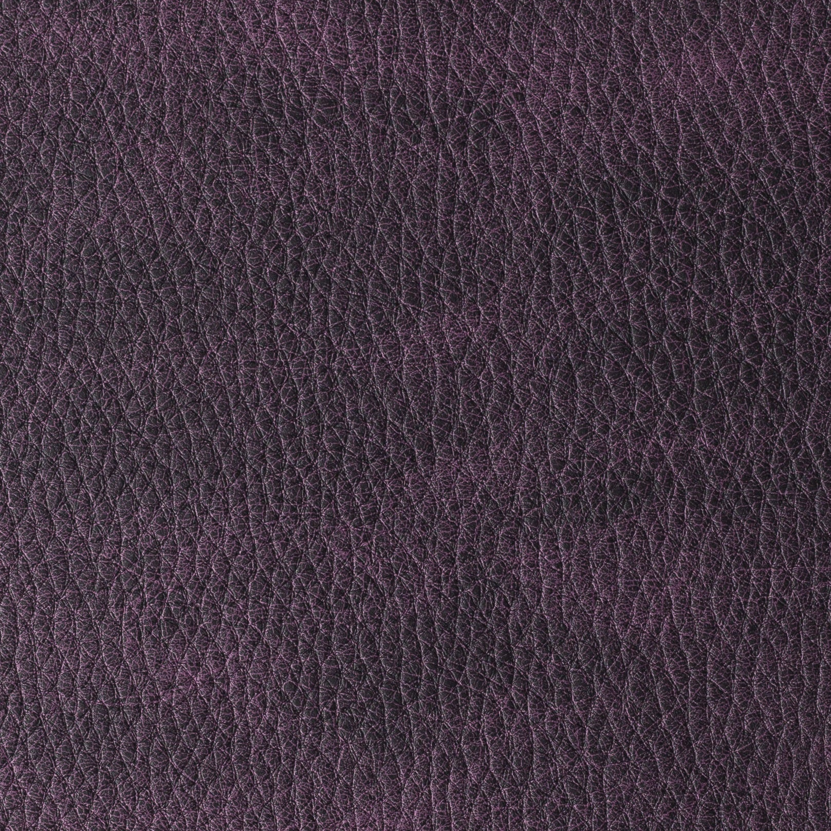 Califórnia Purple