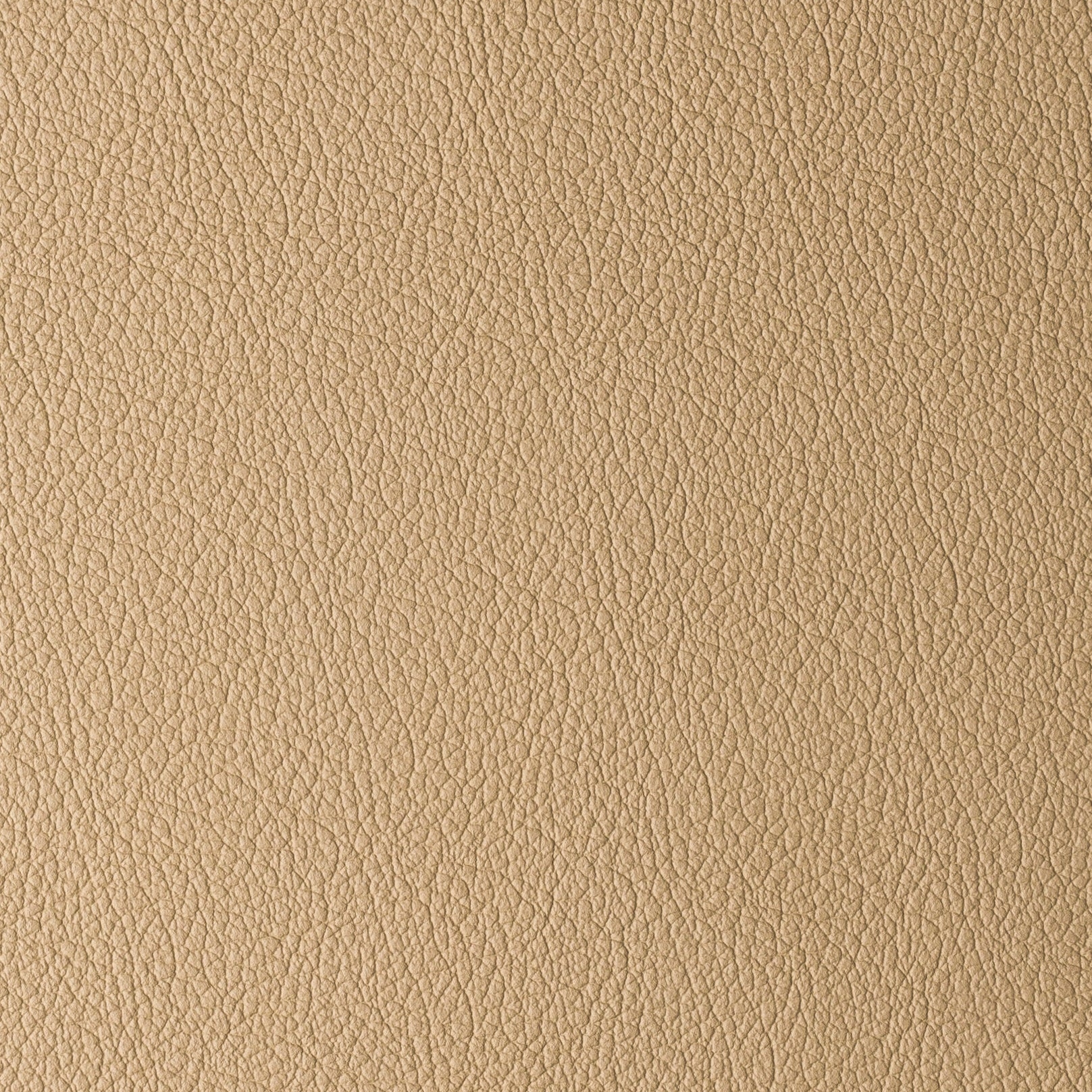 Madras Dark Beige