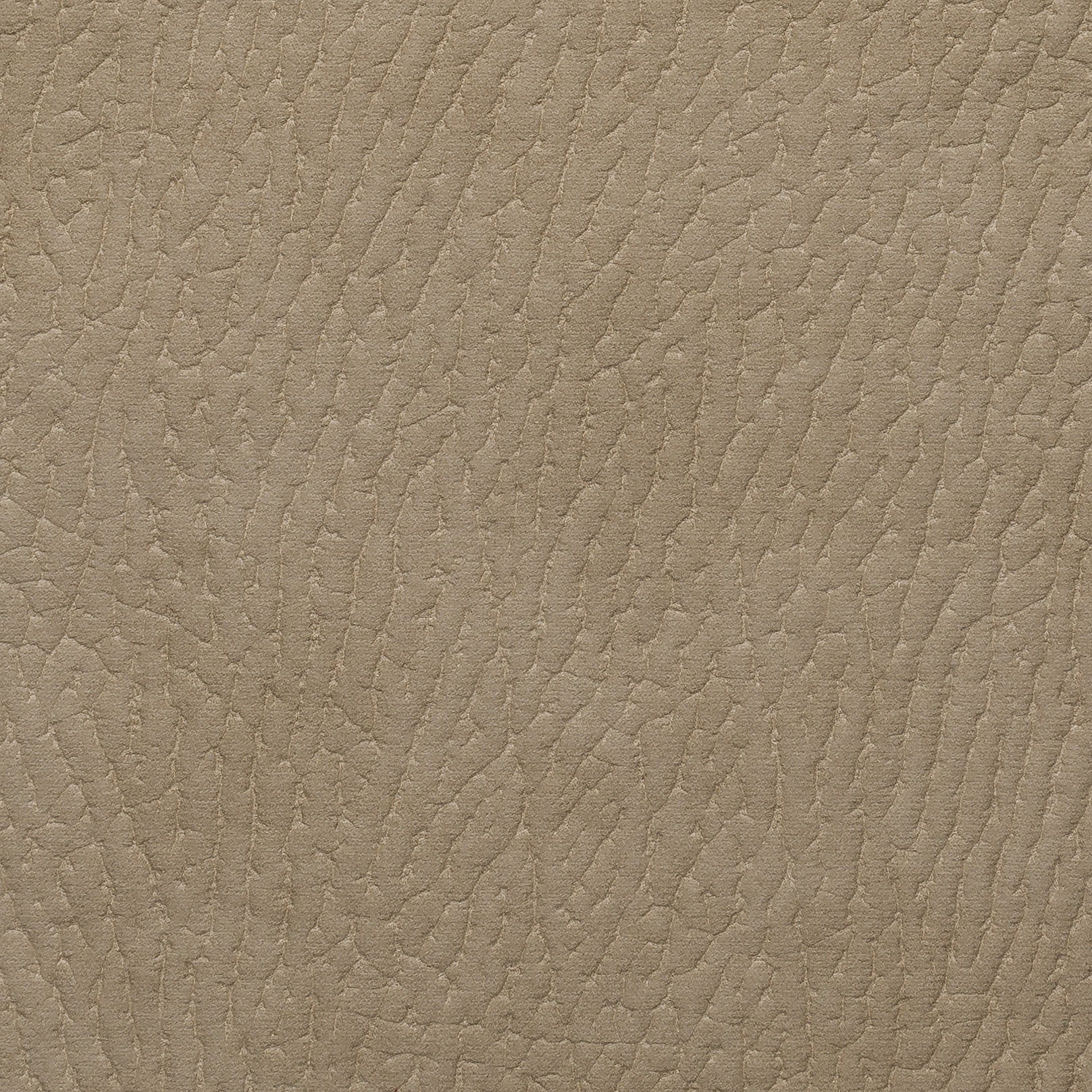 Dakota Beige
