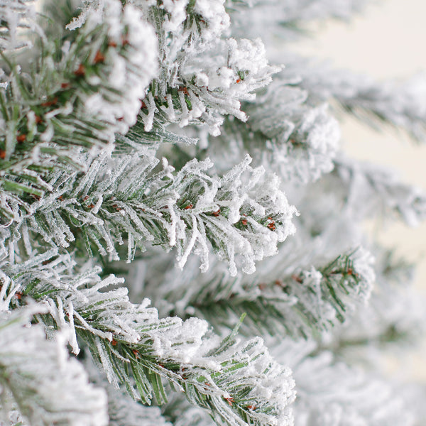 Unlit 6' Artificial Flocked Pine Christmas Tree - Christmas Tree, Unlit - 6' Artificial Christmas tree rental - no lights or decorations - Rent-A-Christmas