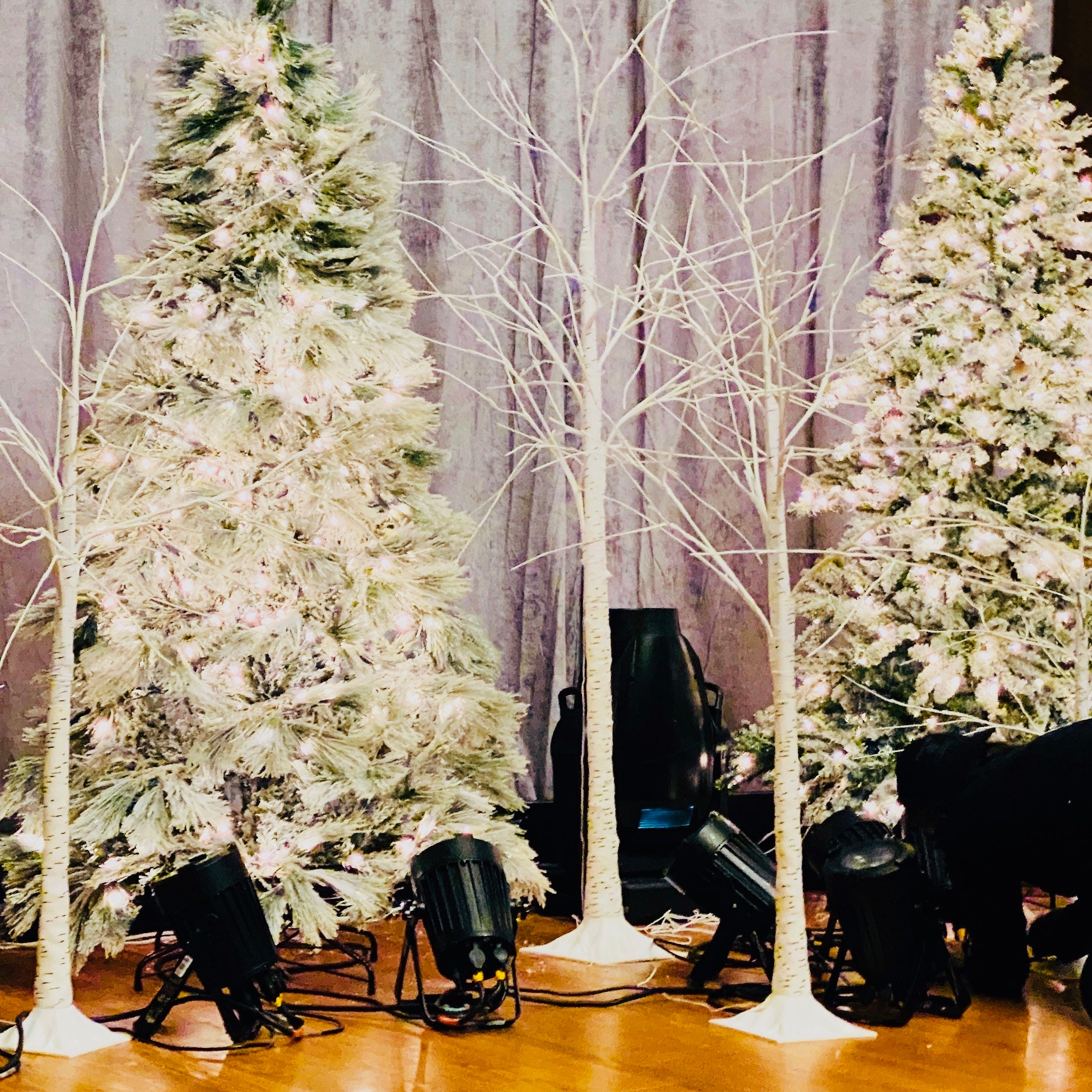 Flocked Christmas trees and illuminated birch trees on stage at commercial event