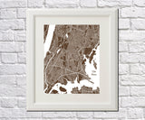 The Bronx New York City Street Map Print Feature Wall Art Poster