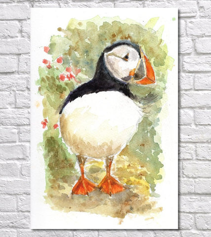 Puffin Watercolour Print, Andi Lucas Wildlife Art
