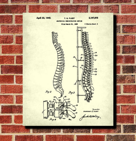 Medical Student Poster Anatomical Skeleton Patent Print