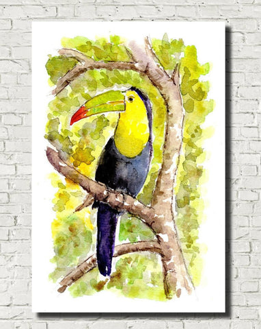 Toucan Watercolour Print, Andi Lucas Wildlife Art