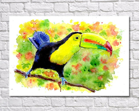 Toucan Watercolour Print, Andi Lucas Bird Wildlife Art