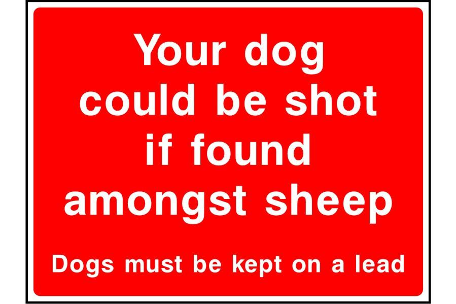 Your dog could be shot if found amongst sheep sign