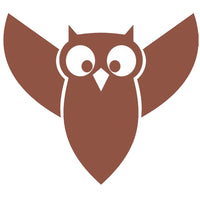 Owl Vinyl Graphic