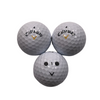 BallFlight Marked Golf Balls - 1 Dozen