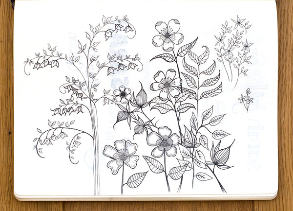 Lomond Paper Co. - 15 day Drawing Challenge (Flowers)