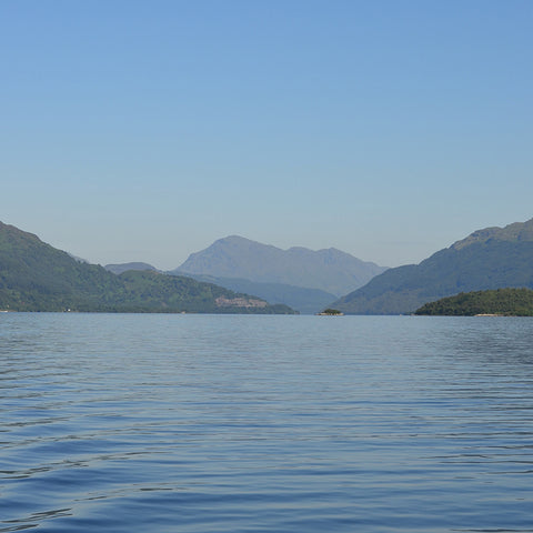 Looking up Loch lomond