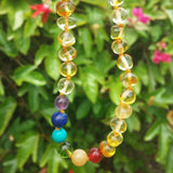 Ultra Rainbow Polished - Baltic Amber Necklace