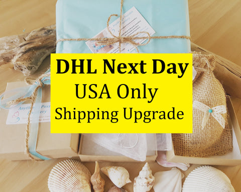 DHLNext Day Delivery Shipping Add-on-USA Only