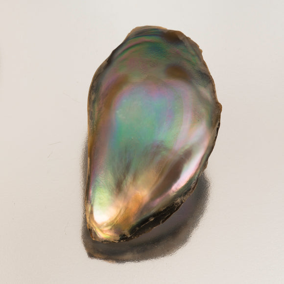 Pearl-Abalone #20214 8.17 cts