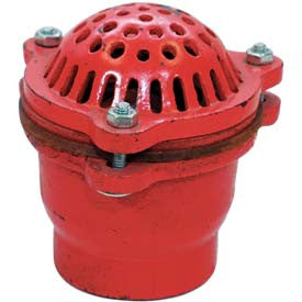 "Quality Cast Iron Foot Valve with Strainer for 1.5"" to 6"" Trash Pumps Hose and Fittings - Cleanflow"