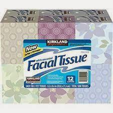 Premium 3 Ply Facial Tissue | 100/Box | CS/12 Janitorial Supplies - Cleanflow