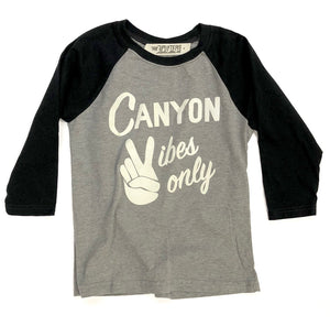D2.  Kids Raglan - Grey