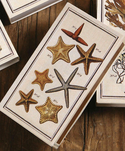 Starfish Match Boxes