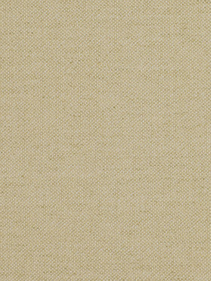 PEWTER Mankato Fabric - Pongee