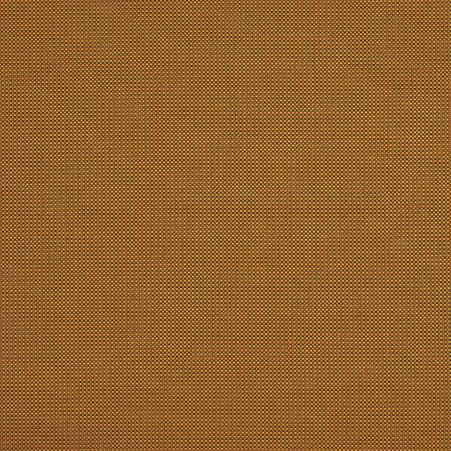 TRANSITIONS Sunset Grill Fabric - Apricot